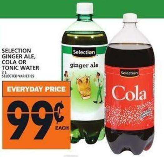 Selection Ginger Ale - Cola Or Tonic Water