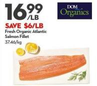 Fresh Organic Atlantic  Salmon Fillet