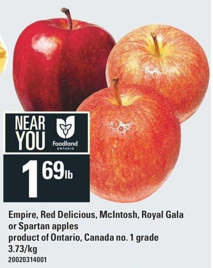 Empire - Red Delicious - Mcintosh - Royal Gala Or Spartan Apples