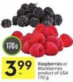 Raspberries or Blackberries Product of USA 170 g