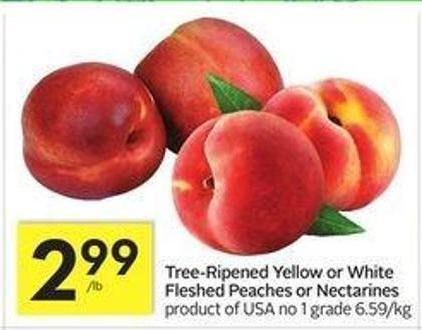 Tree-ripened Yellow or White Fleshed Peaches or Nectarines