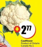 Cauliflower Product of Ontario - Canada No. 1