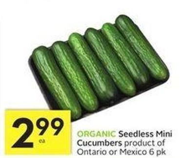 Organic Seedless Mini Cucumbers