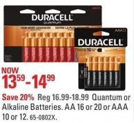 Duracell Quantum or Alkaline Batteries