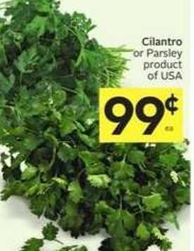 Cilantro or Parsley