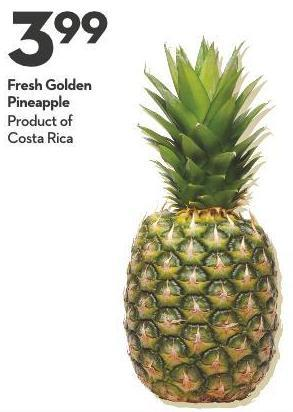 Fresh Golden Pineapple