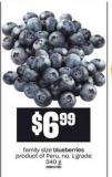 Blueberries - 340 g