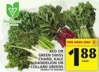 Red Or Green Swiss Chard - Kale Dandelion Or Collard Greens