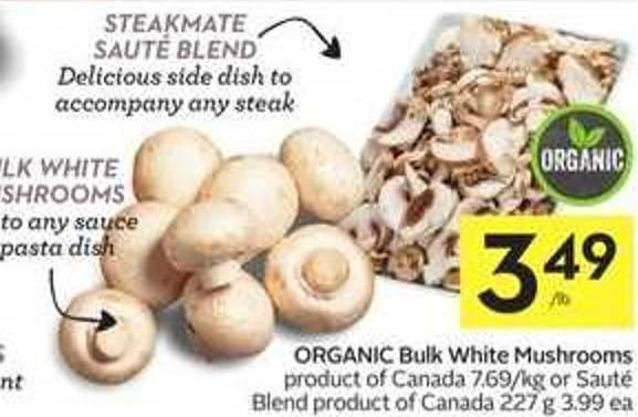 Bulk White Mushrooms