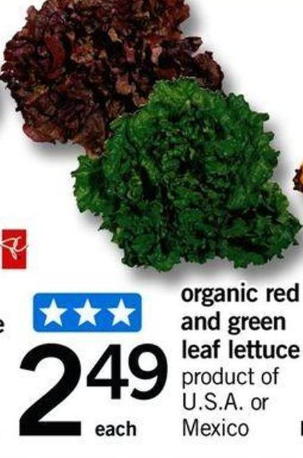 Organic Red And Green Leaf Lettuce