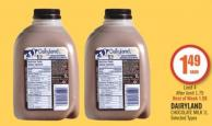 Dairyland Chocolate Milk 1 L