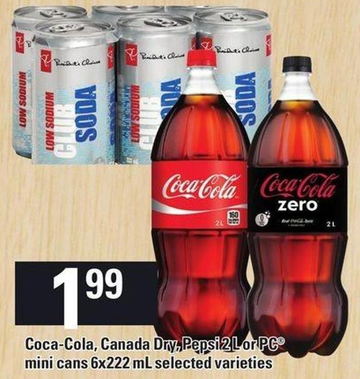 Coca-cola - Canada Dry - Pepsi 2 L Or PC Mini Cans 6x222 Ml