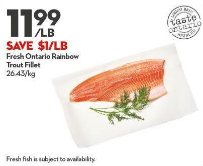 Fresh Ontario Rainbow  Trout Fillet 26.43/kg