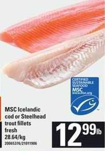 Msc Icelandic Cod Or Steelhead Trout Fillets