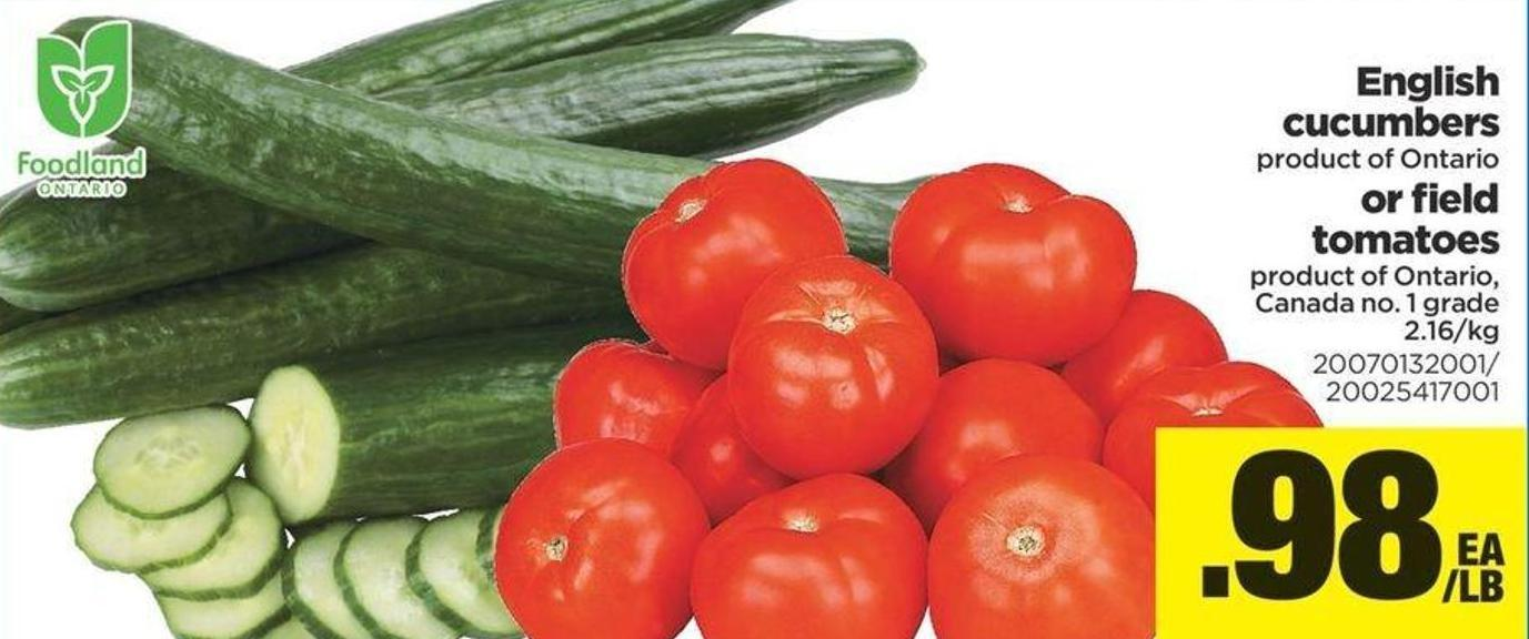English Cucumbers Or Field Tomatoes