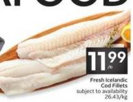 Fresh Icelandic Cod Fillets