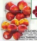 Peaches Or Nectarines