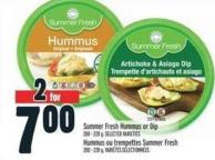 Summer Fresh Hummus Or Dip 00 - 228 g