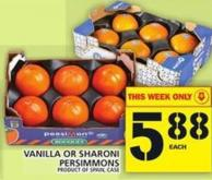 Vanilla Or Sharoni Persimmons