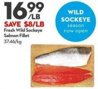 Fresh Wild Sockeye Salmon Fillet
