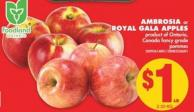 Ambrosia or Royal Gala Apples