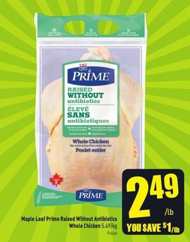 Maple Leaf Prime Raised Without Antibiotics Whole Chicken 5.49/kg