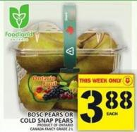 Bosc Pears Or Cold Snap Pears