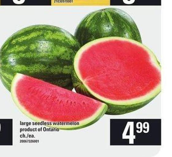 Large Seedless Watermelon