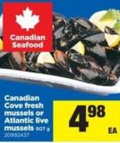 Canadian Cove Fresh Mussels Or Atlantic Live Mussels - 907 g