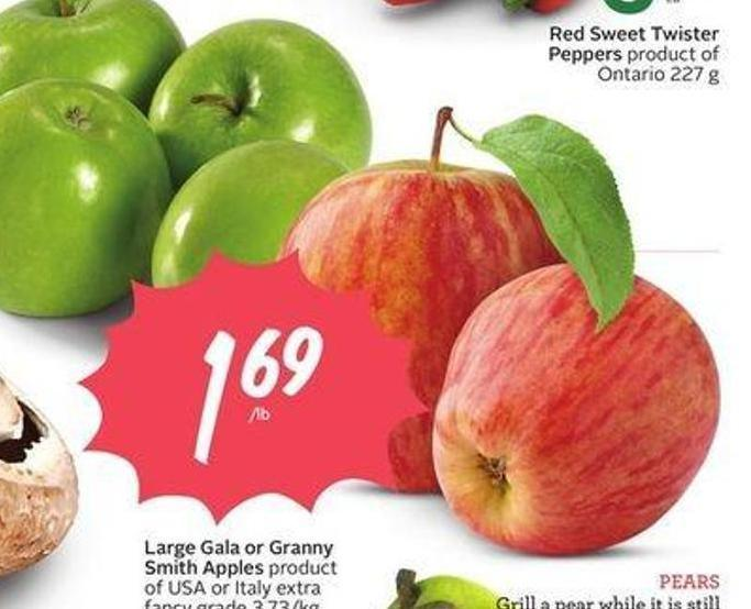 Large Gala or Granny Smith Apples