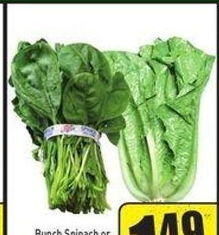 Bunch Spinach or Romaine Lettuce Product of USA