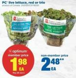 PC Live Lettuce - Red Or Trio