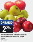 Ambrosia - Golden Or Red Delicious Apples