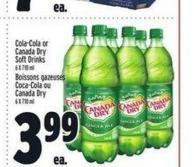 Cola-cola or Canada Dry Soft Drinks