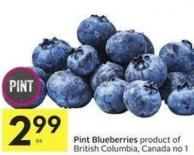 Pint Blueberries Product of British Columbia - Canada No 1