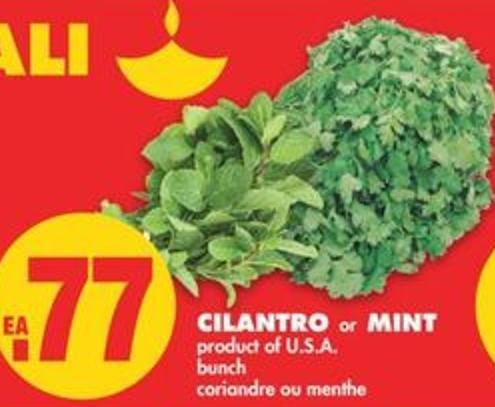 Cilantro Or Mint - Bunch