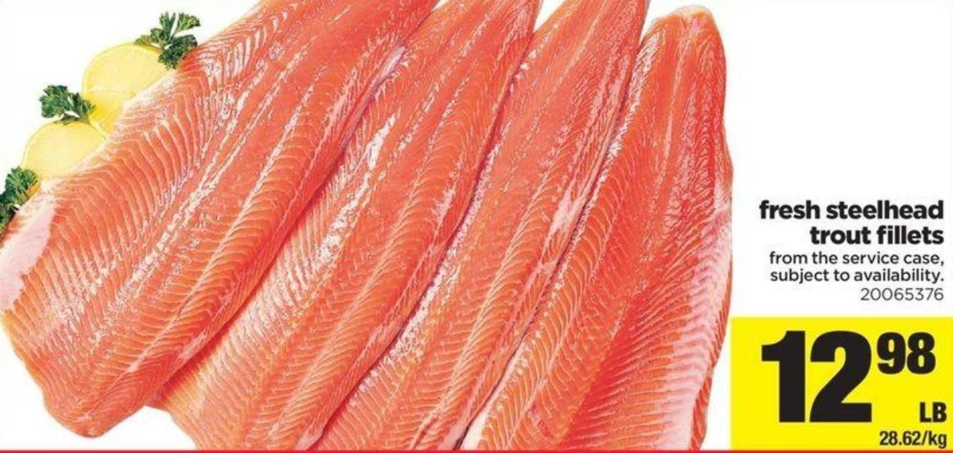 Fresh Steelhead Trout Fillets