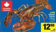 Live Atlantic Lobster - 1-1.25 Lb
