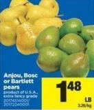 Anjou - Bosc Or Bartlett Pears