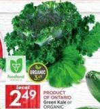 Green Kale or Organic