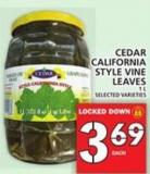California Style Vine Leaves