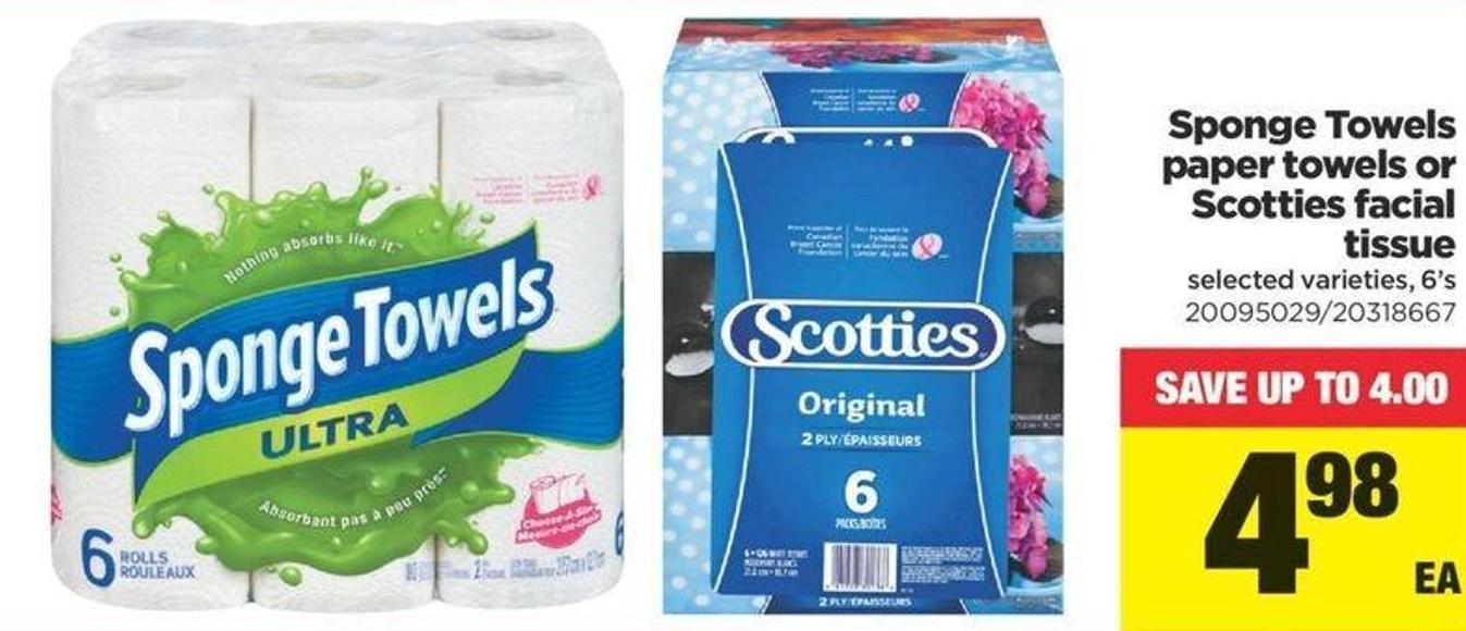 Sponge Towels Paper Towels Or Scotties Facial Tissue - 6's