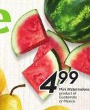 Mini Watermelons Product of Spain 2 Lb Bag