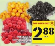 Raspberries Or Blackberries Or Goldenberries