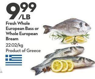 Fresh Whole  European Bass or Whole European Bream 22.02/kg