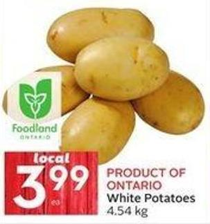 White Potatoes 4.54 Kg