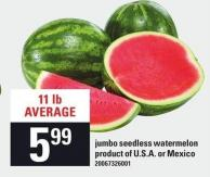 Jumbo Seedless Watermelon