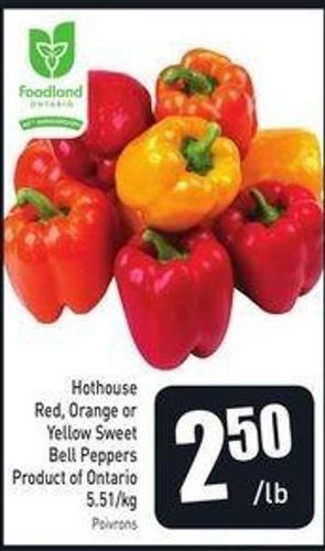 Hothouse Red - Orange or Yellow Sweet Bell Peppers Product of Ontario 5.51/kg