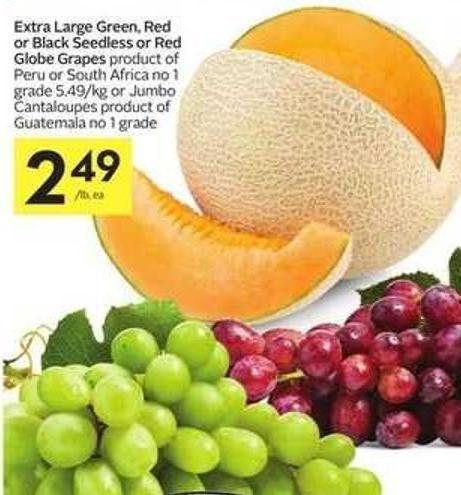 Extra Large Green - Red or Black Seedless or Red Globe Grapes