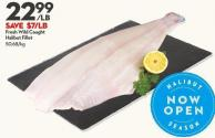 Fresh Wild Caught Halibut Fillet